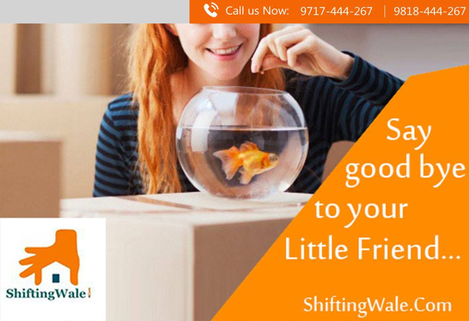 Relocate Your Household Goods in Mumbai Pune Goa Navi Mumbai To Bangalore Hyderabad Chnnai Coimbatore Kochi Bengaluru, Shifting Your Household Goods in Mumbai Pune Goa Navi Mumbai To Bangalore Hyderabad Chnnai Coimbatore Kochi Bengaluru